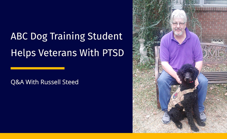 Veteran Training Service Dogs
