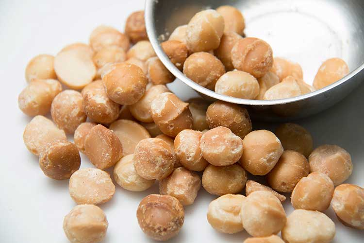 Macadamia Nut Poisoning in Dogs