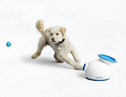 gift for active dog, ifetch ball launcher image with dog chasing ball