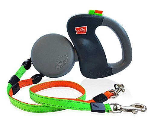 gift for active dog, image of dual doggy retractable leash