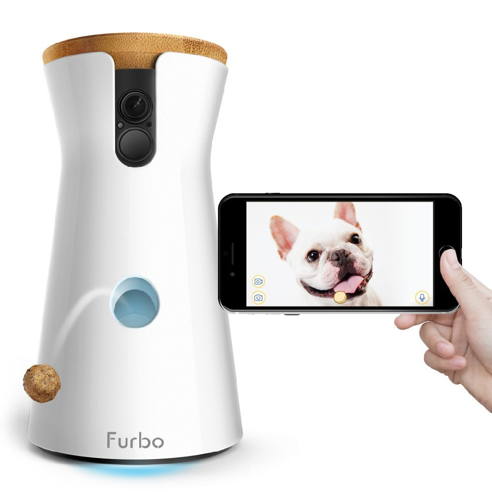 gift for city pet, furbo dog camera and smart phone image
