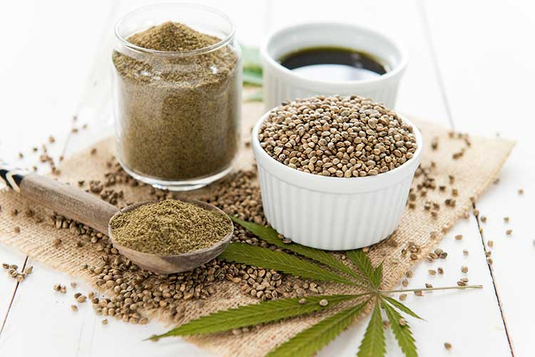 Hemp Oil for Dogs