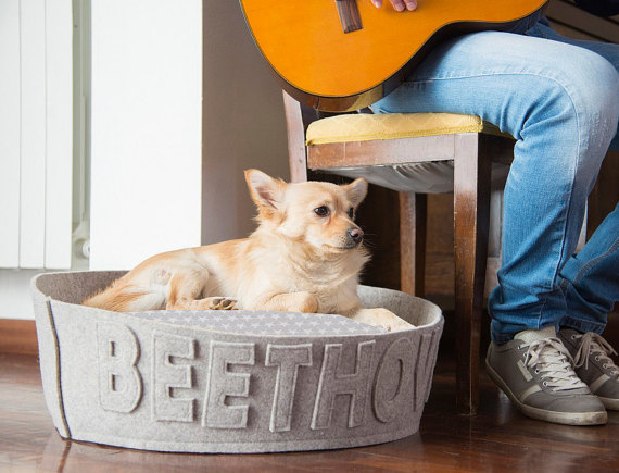 image of personalized modern dog bed as dog gift idea