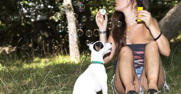 dog bubbles games